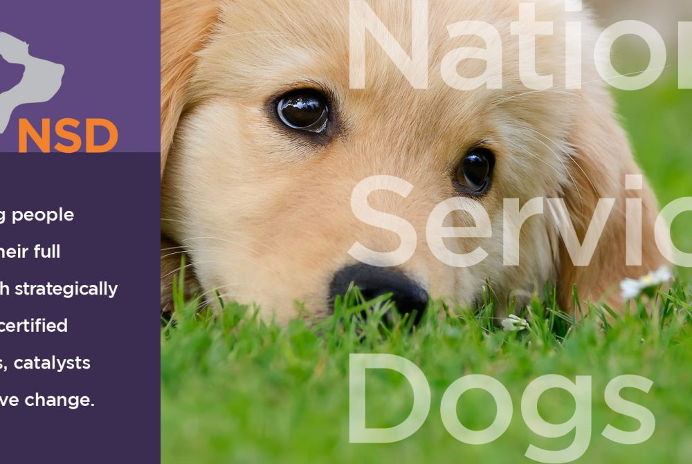national service dog